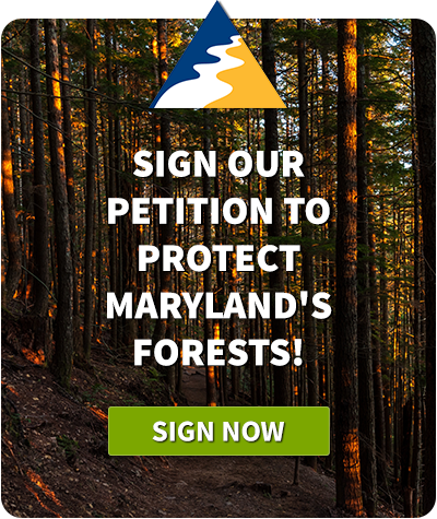 Sign our petition to protect Maryland's Forests!