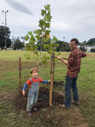 Family working together to stake a newly planted tree at Carter Jones Park in Richmond, VA. Credit: Parker Agelasto.
